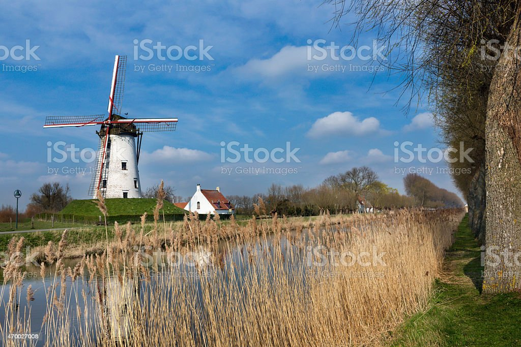 Damme and windmill in Flanders stock photo