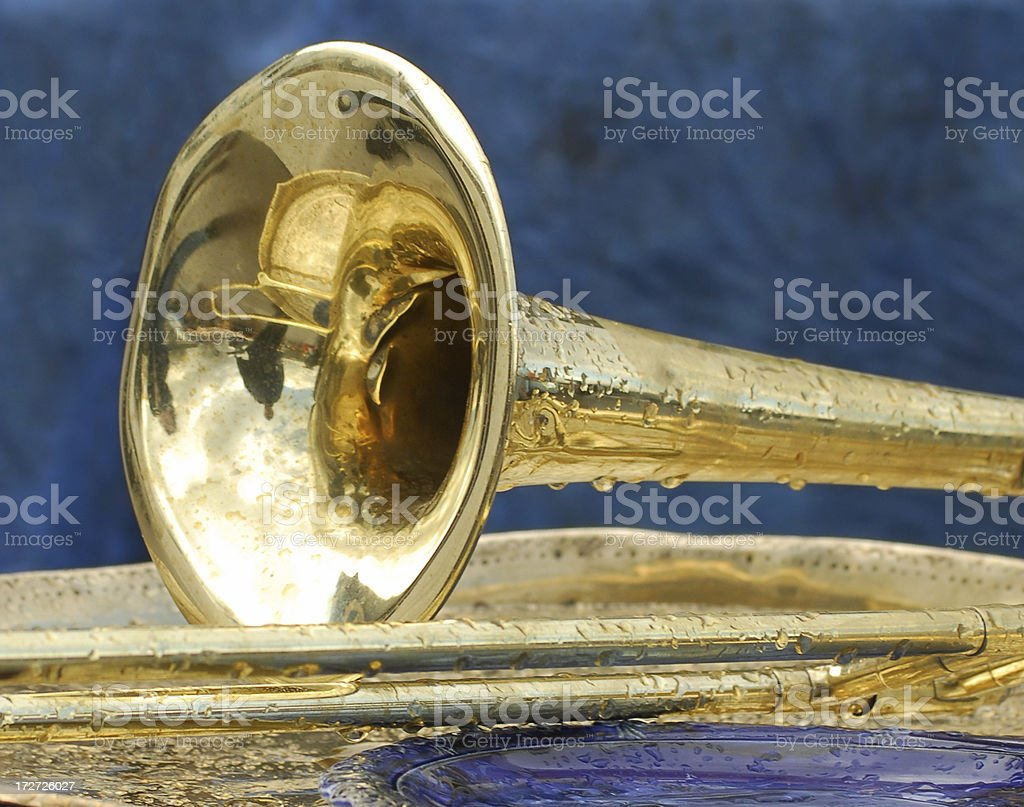 Damp Trombone royalty-free stock photo