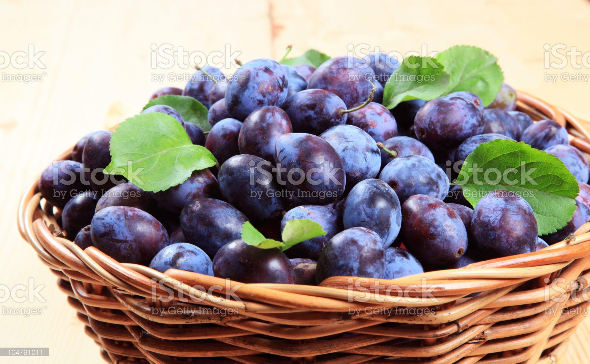 Damson plums royalty-free stock photo