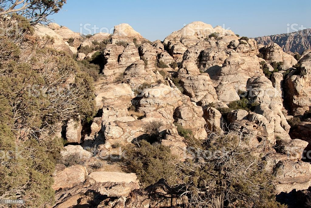 Dana National Park stock photo