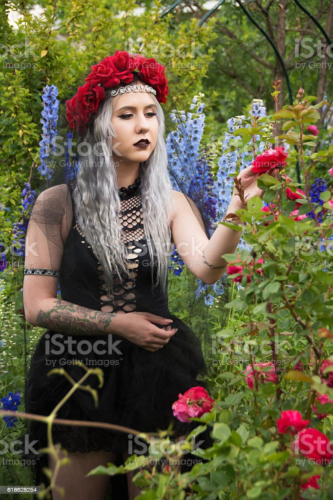Dancer dressed as Evil Queen checking roses for thorns stock photo