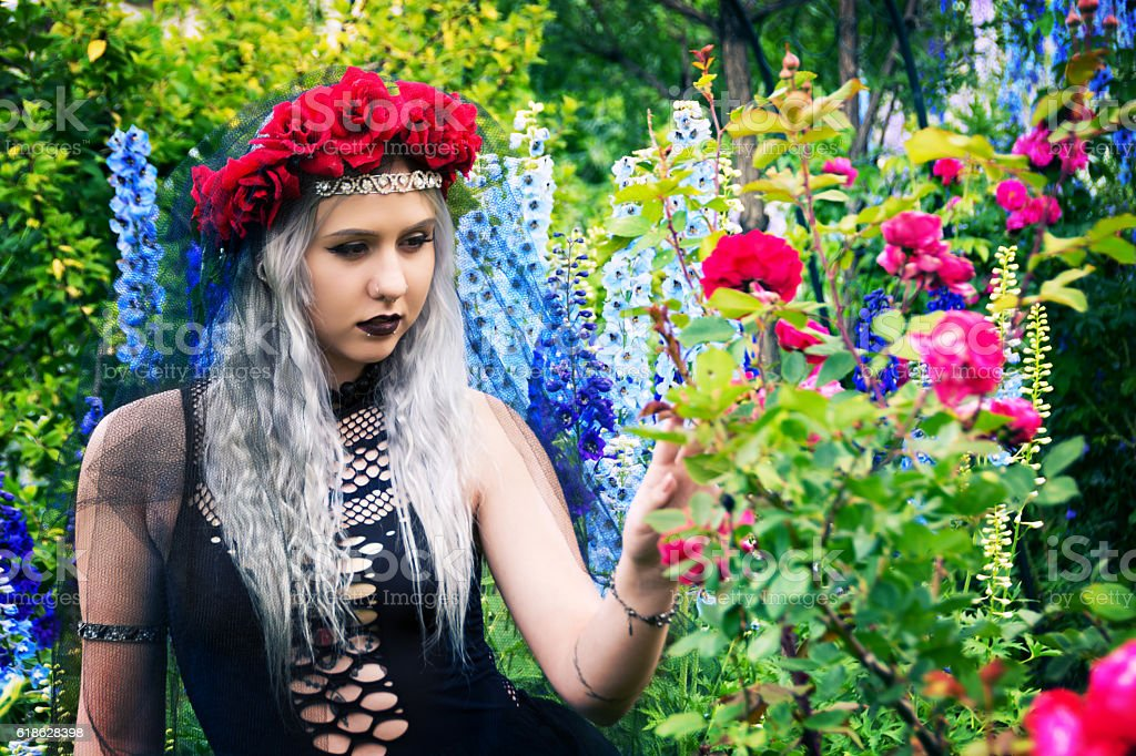 Dancer dressed as Evil Queen checking roses for thorns. stock photo