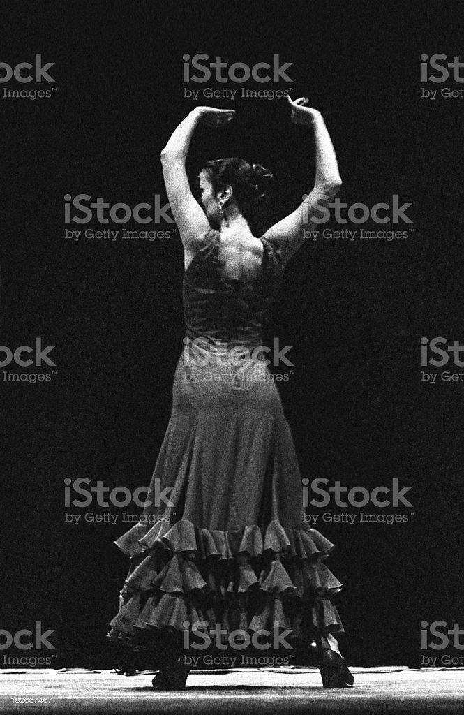 Dancing flamenco stock photo