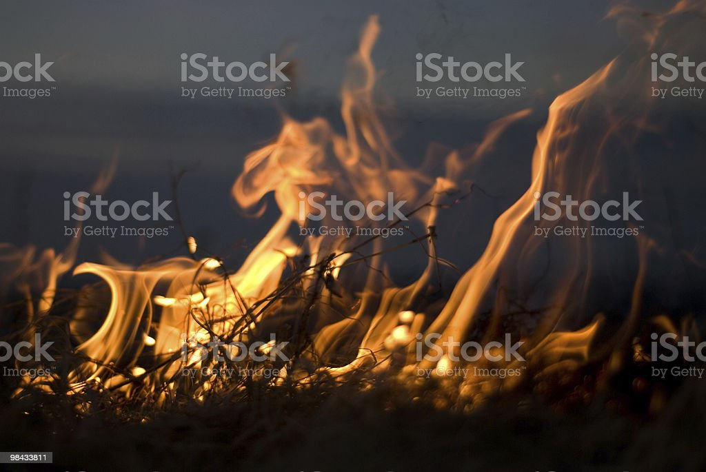 Dancing Flames royalty-free stock photo