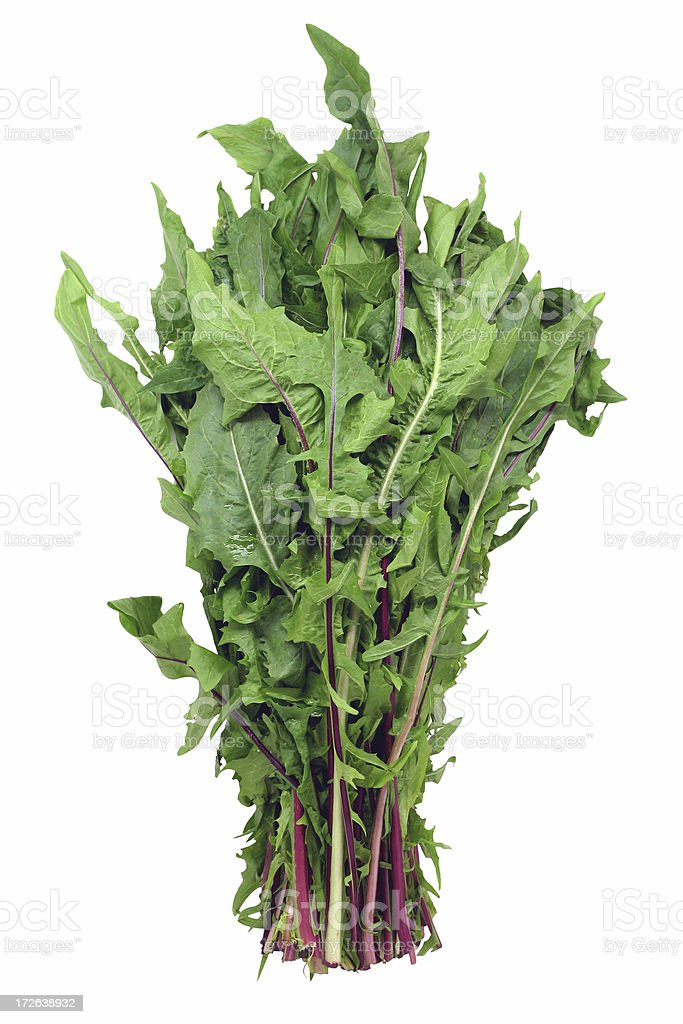 dandelion greens stock photo
