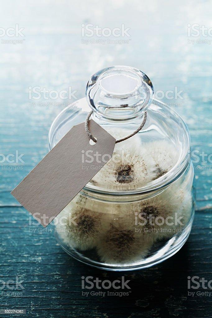 Dandelion in wishing jar, wish concept, unusual gift or present stock photo