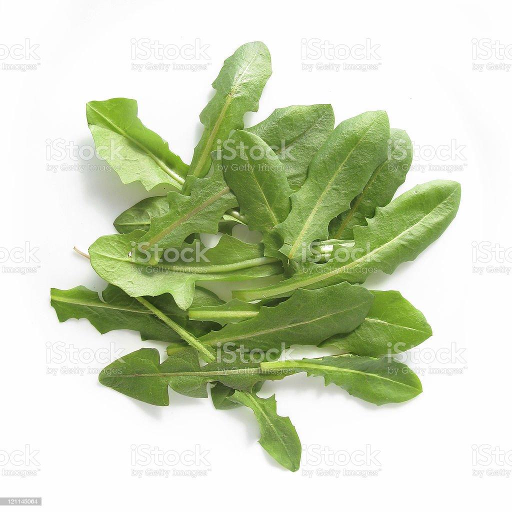 Dandelion leaves salad isolated on white background stock photo