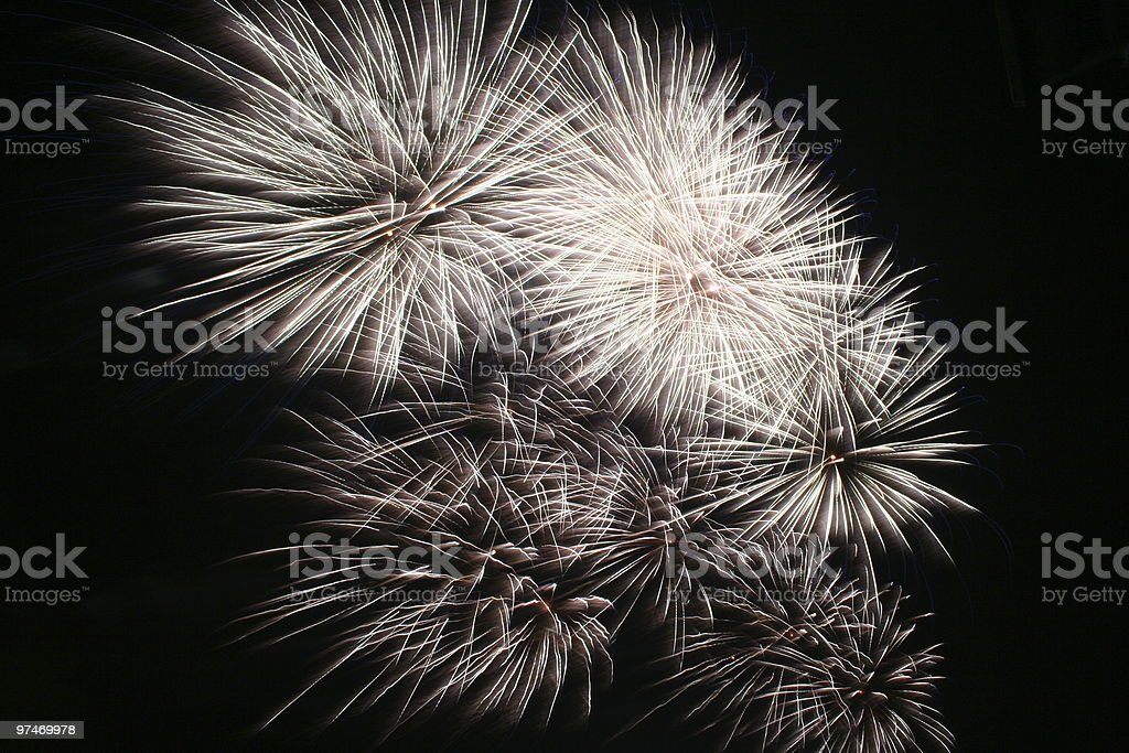 Dandelion Seed. Firework Display. royalty-free stock photo