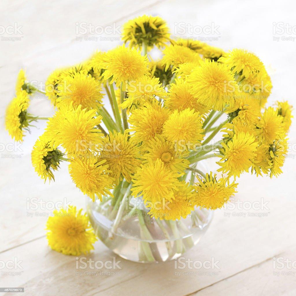 dandelions in vase royalty-free stock photo
