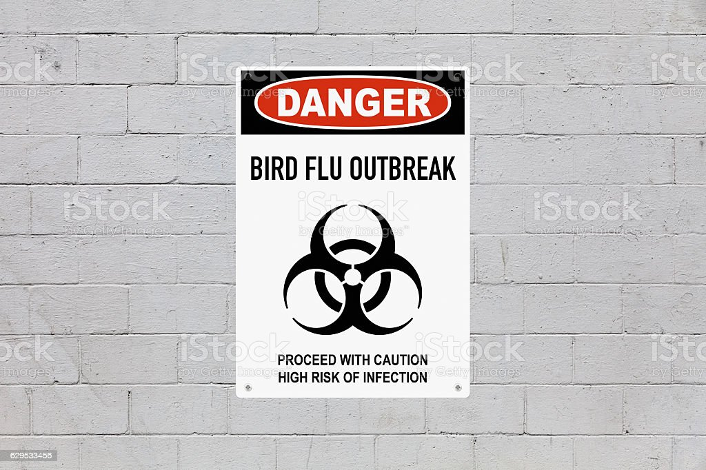 Danger - Bird Flu outbreak stock photo