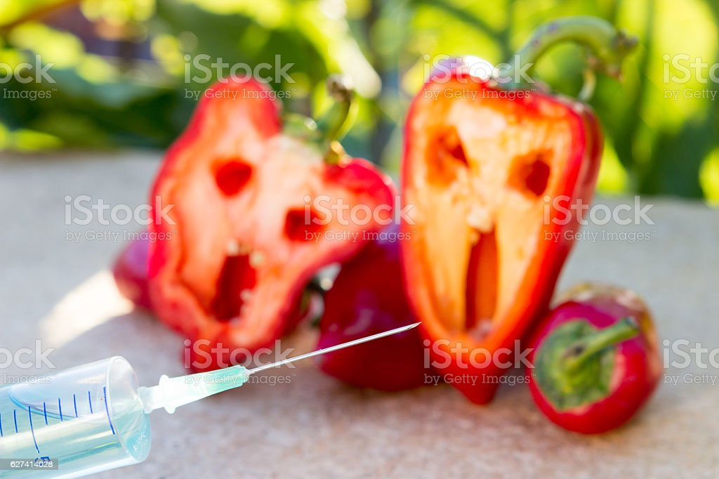 Danger of GMO food stock photo