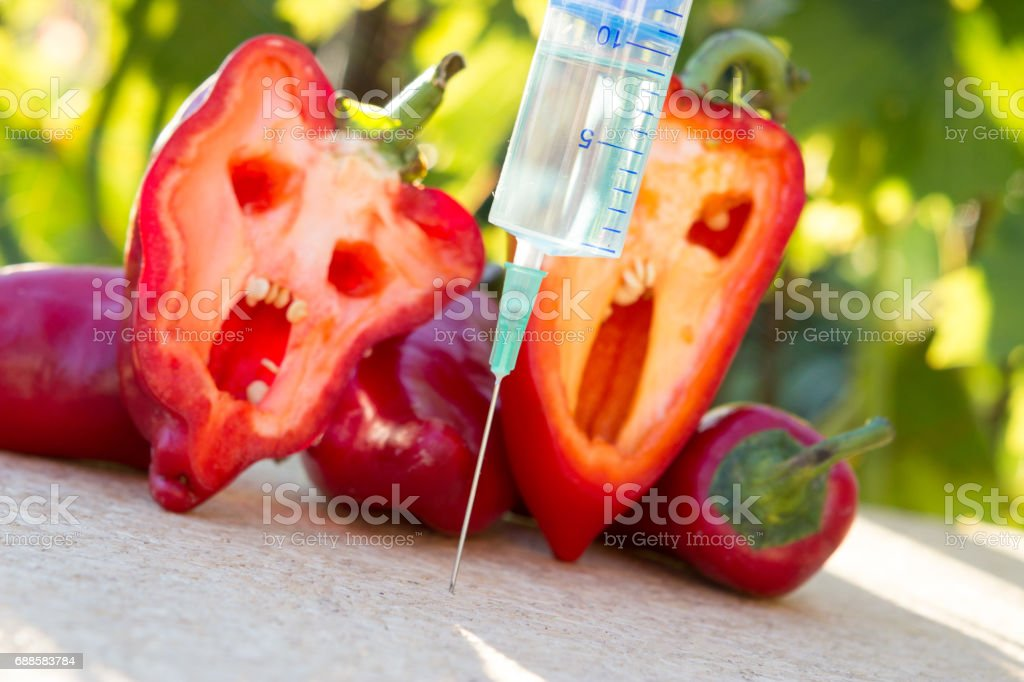 Danger of modified food stock photo