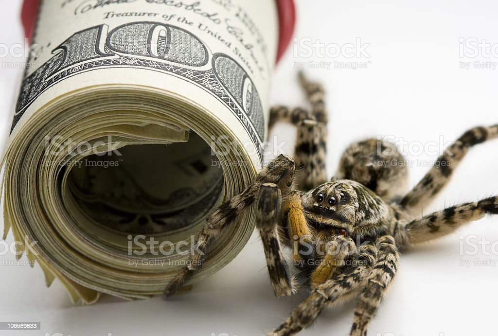 Danger stand guard - poison spider and money roll stock photo