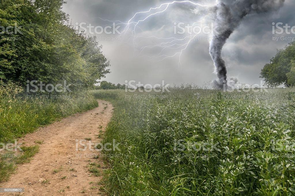 Danger storm producing a Tornado over green field stock photo