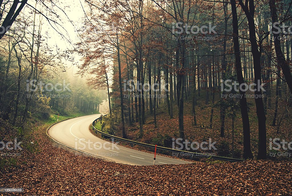 Dangerous and wet autumnally street royalty-free stock photo