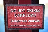 Dangerous Animal Sign