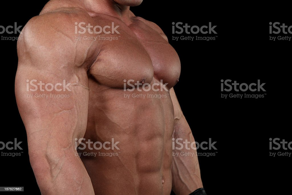 Dangerous fighter detail royalty-free stock photo