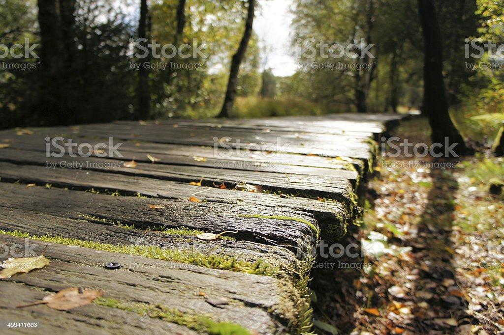 dangerous wooden slippery path royalty-free stock photo