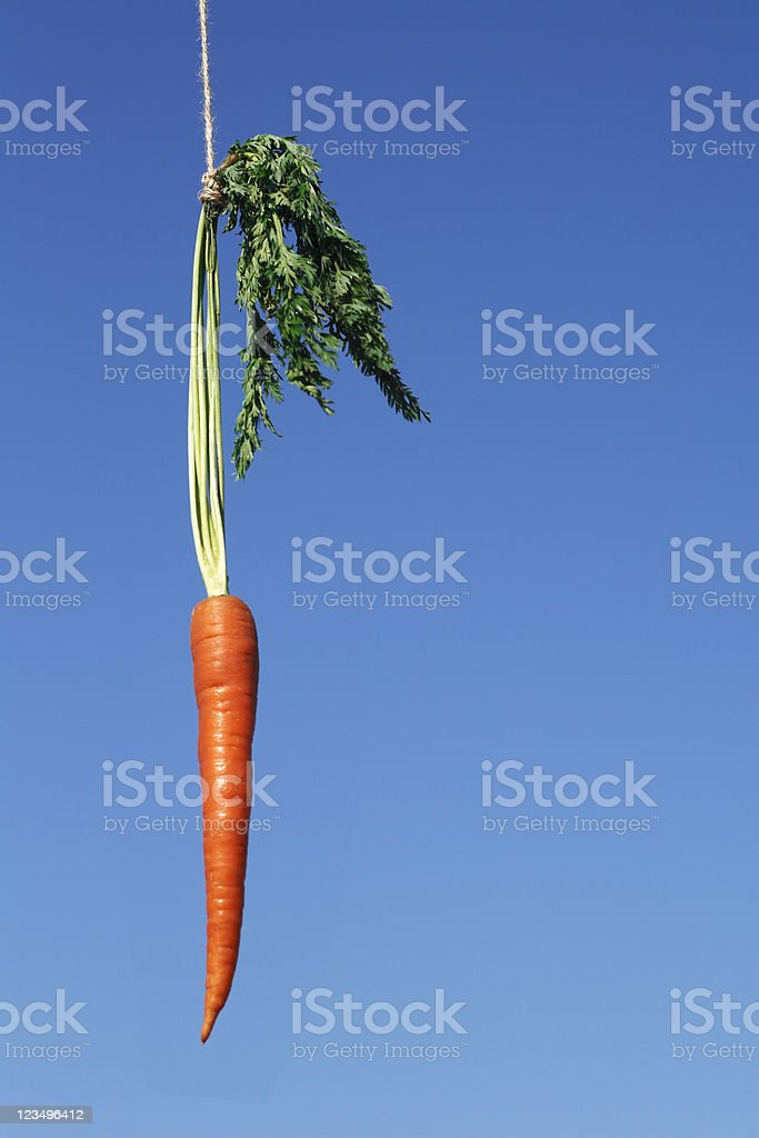 Dangling a carrot royalty-free stock photo