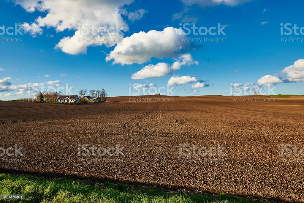 Danish agricultural field in spring stock photo