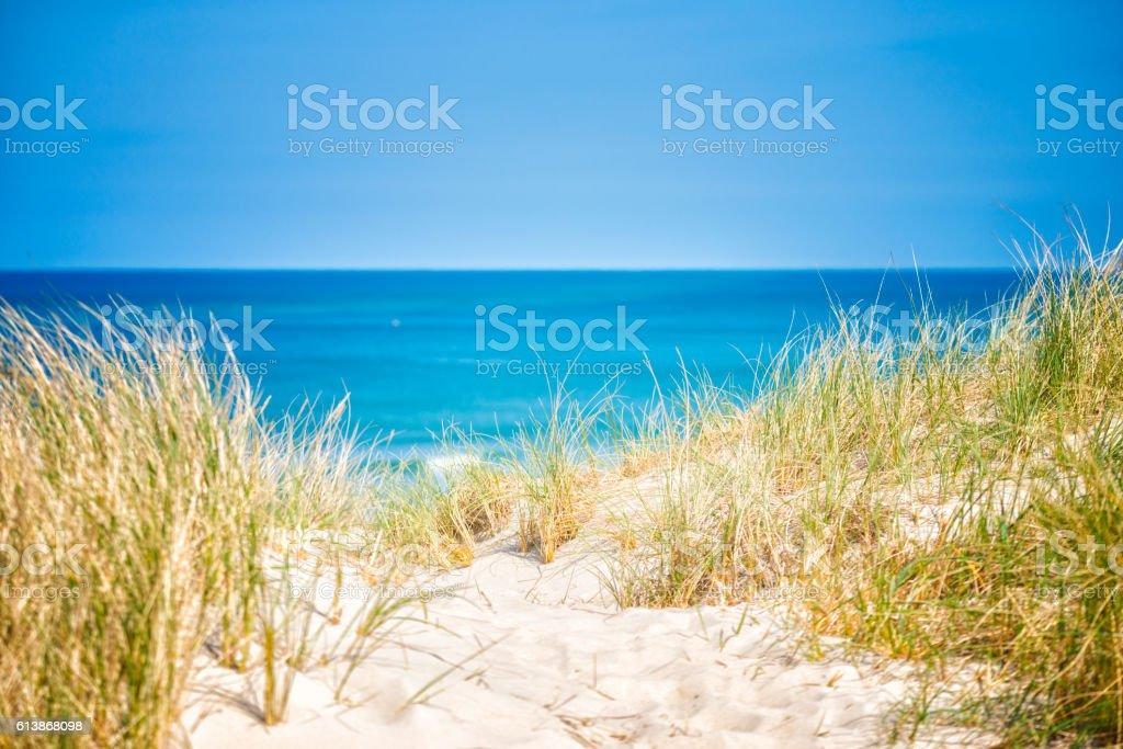 Danish dunes stock photo