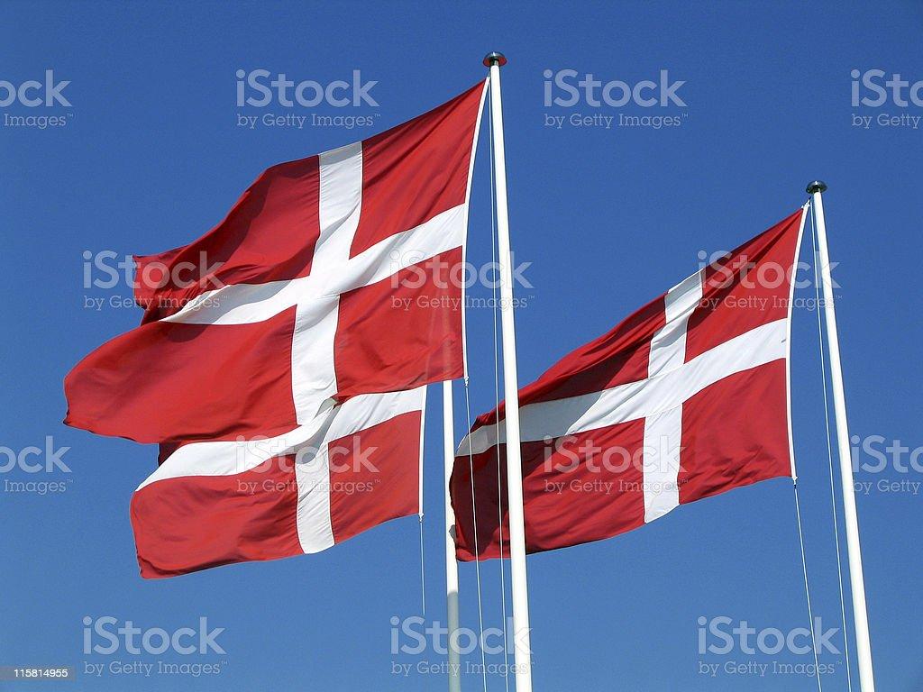 Danish flags stock photo