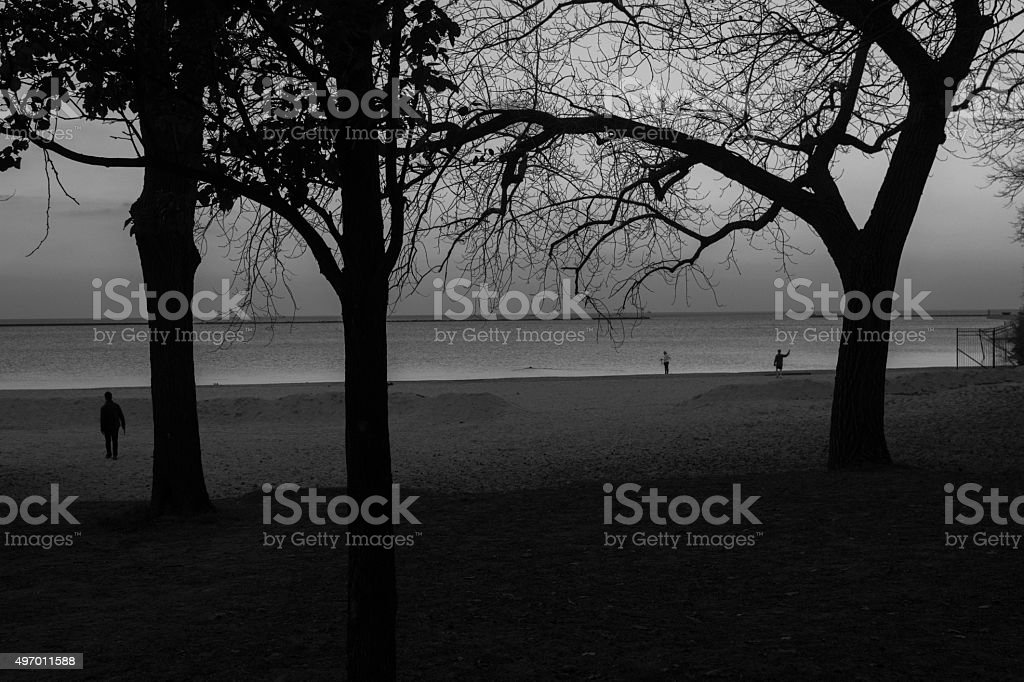 Dark Beach stock photo