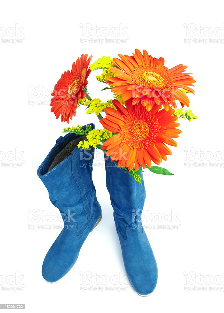 Dark blue boot and  red flowers stock photo