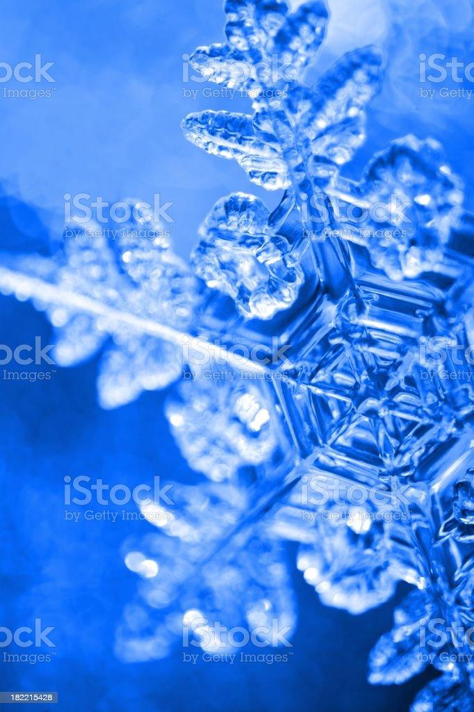 Dark Blue Snowflake royalty-free stock photo