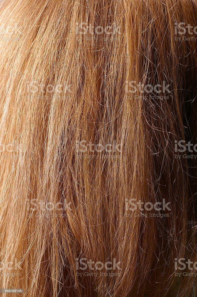 dark chestnut hair closeup stock photo