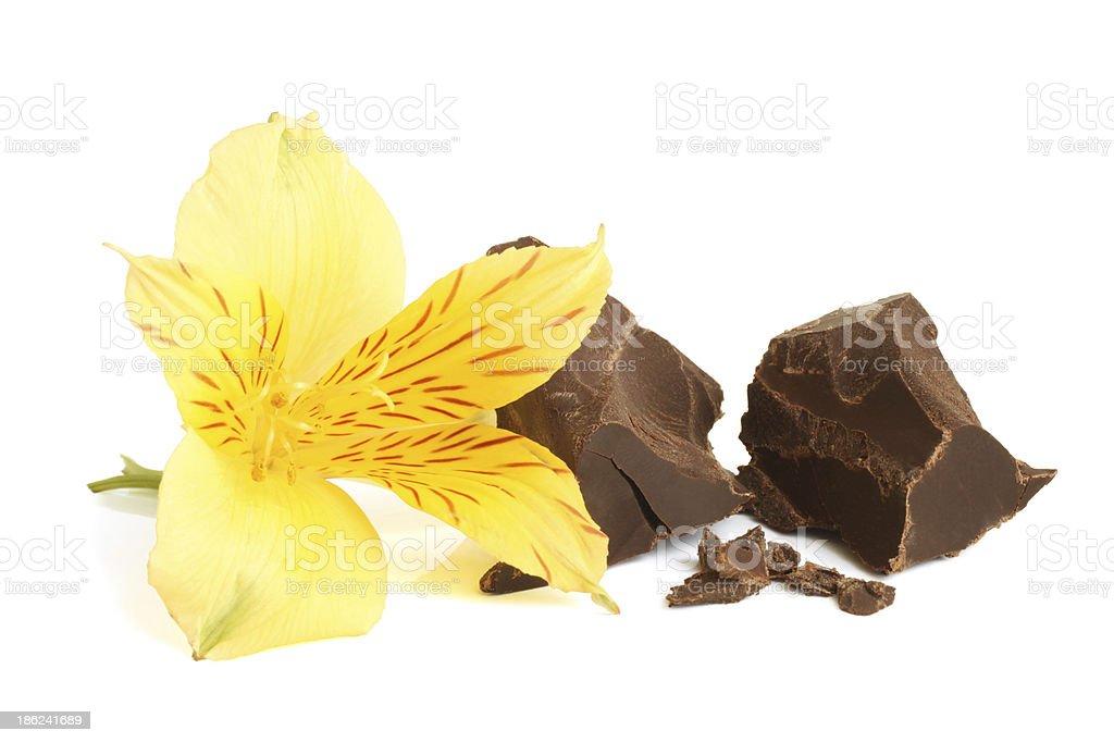 Dark chocolate with flower of alstroemeria stock photo