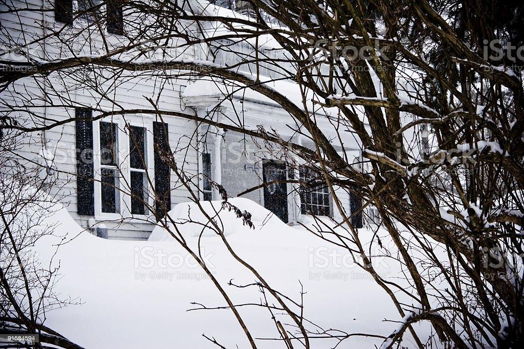 Dark Depths of Winter royalty-free stock photo