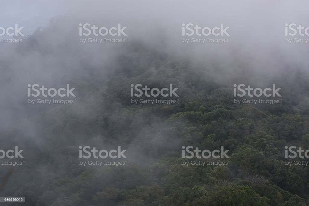 Dark fog and cloud mountain valley spring landscape. stock photo
