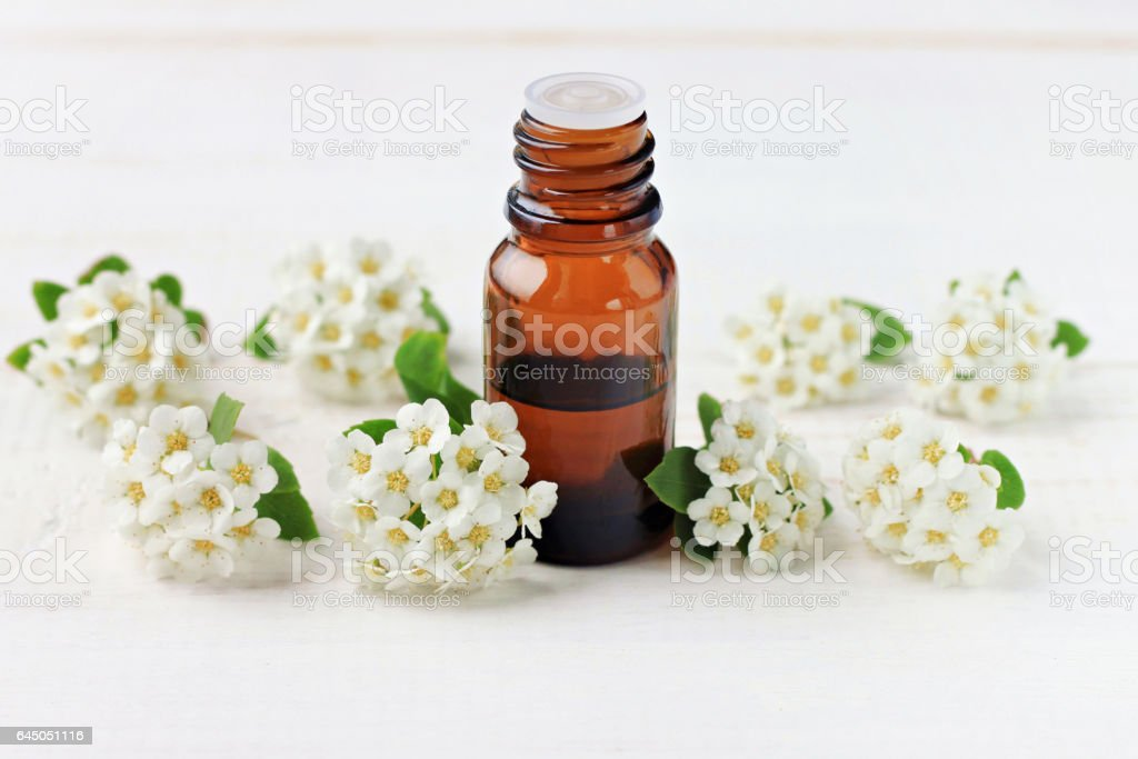 Dark glass apothecary essential oil dropper bottle amidst tender soft spring aromatic blossom stock photo