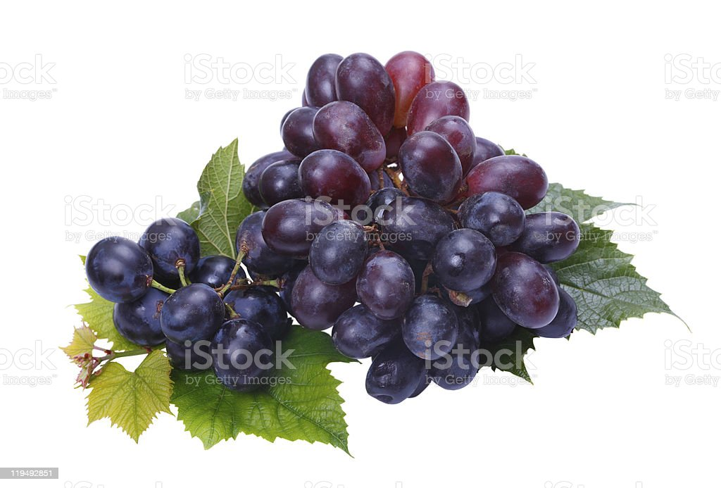 Dark grapes royalty-free stock photo