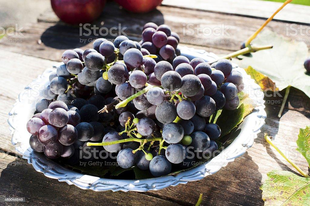 Dark grapes royalty-free stock photo