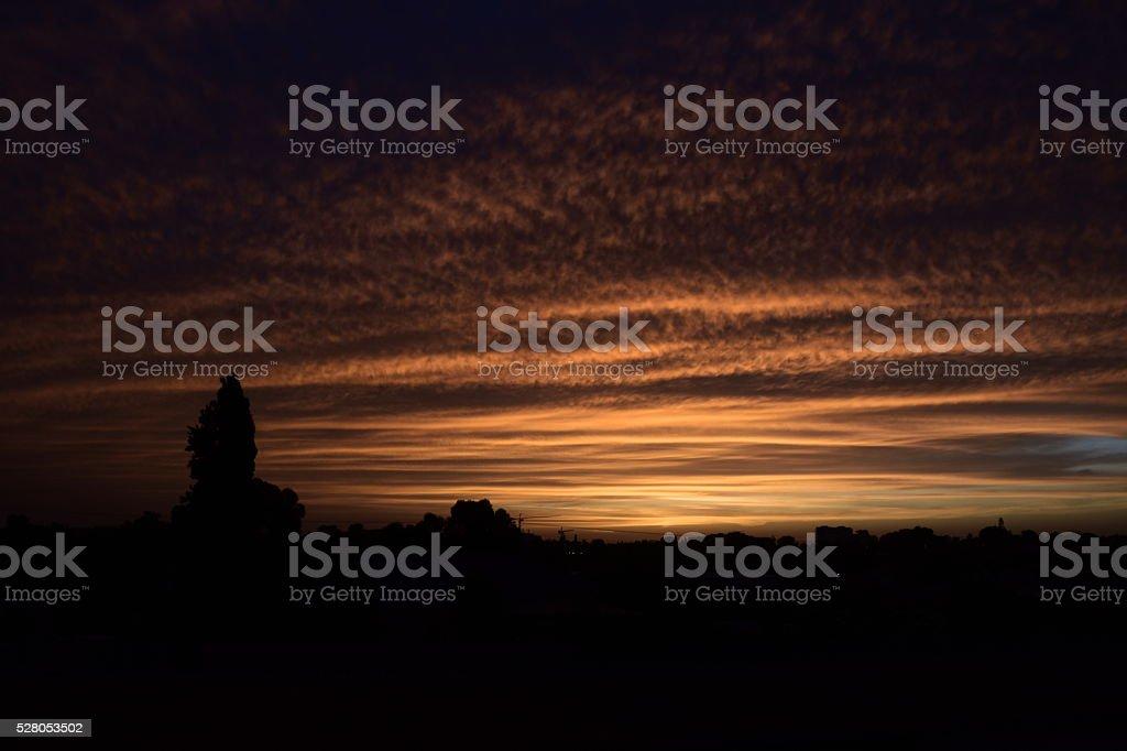 dark nature Silhouette stock photo
