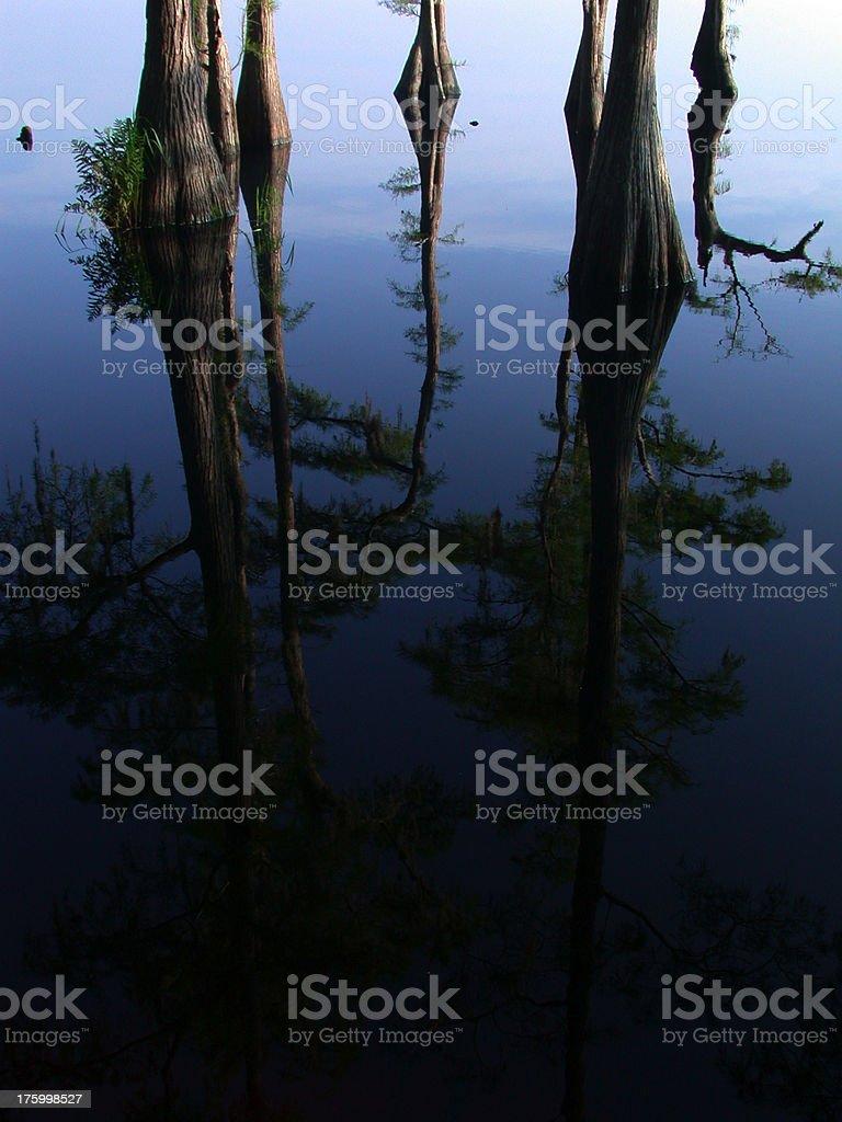 Dark Reflections royalty-free stock photo