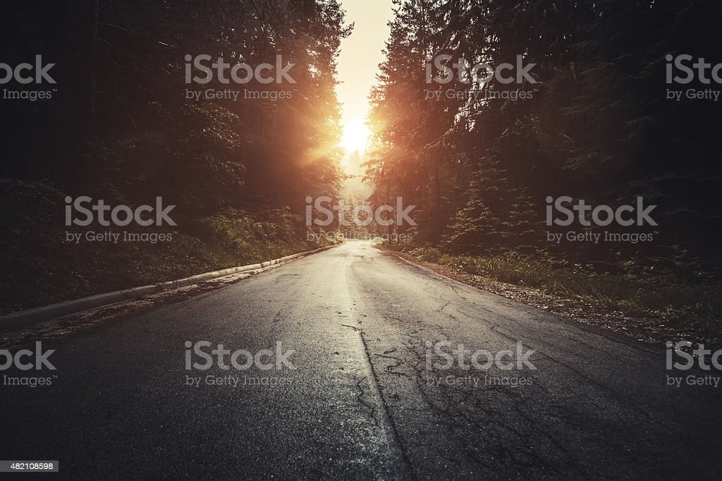 Dark road in a misty forest at sunset stock photo