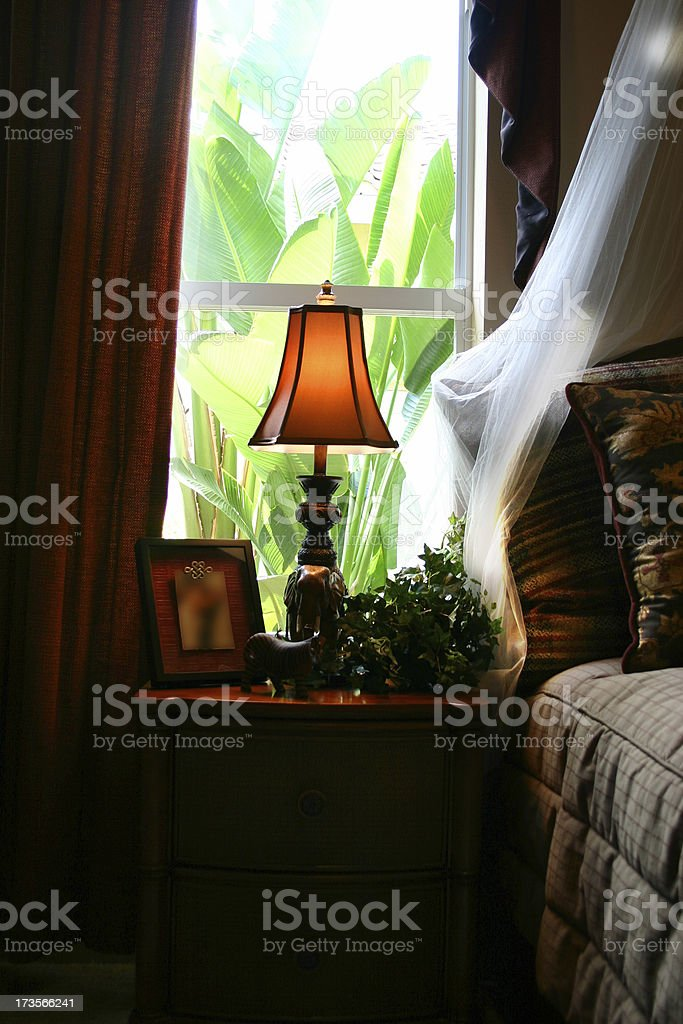 Dark Room, Bright Window royalty-free stock photo
