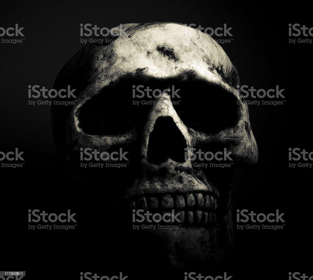 Dark Skull royalty-free stock photo