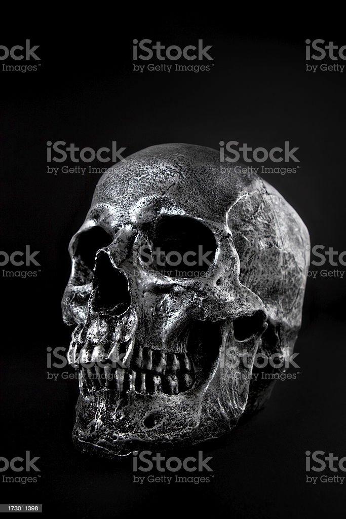 Dark Skull stock photo