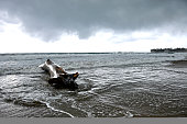 Dark Storm Clouds Over Beach with Driftwood