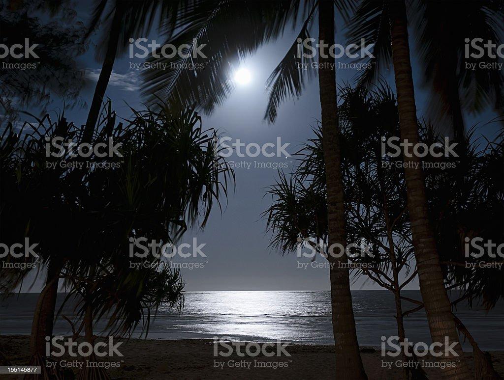 Dark Tropical Beach with Moonlight stock photo