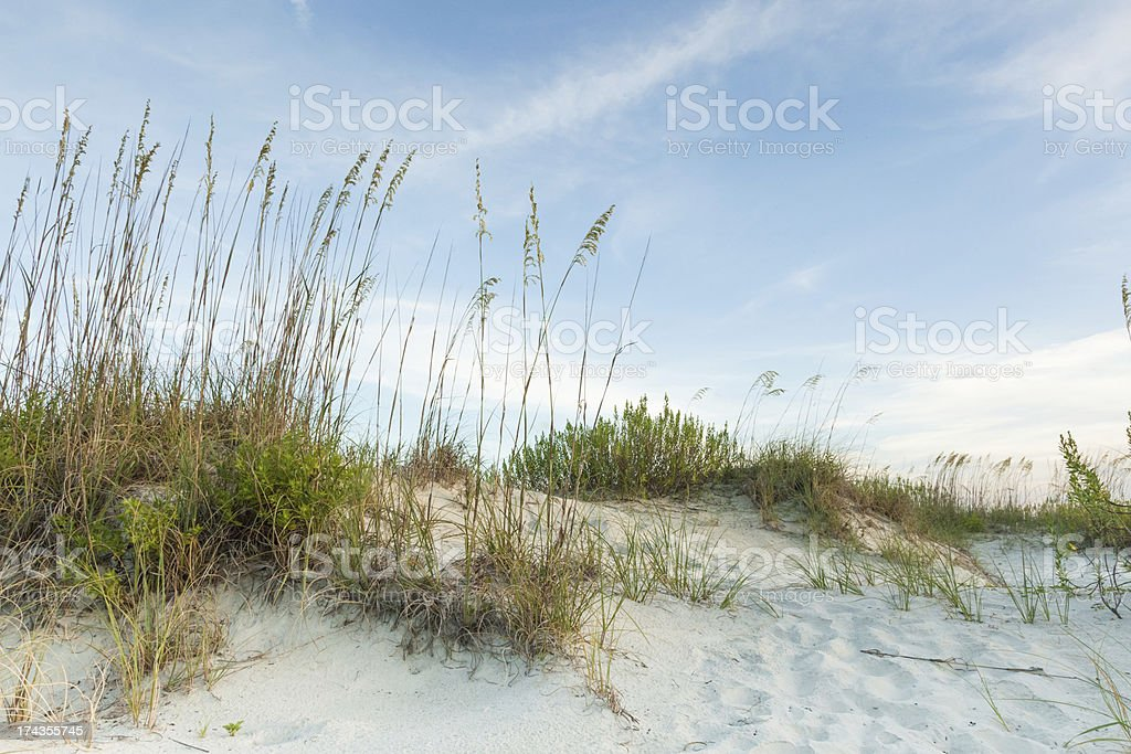 Dark Twilight Dunes royalty-free stock photo