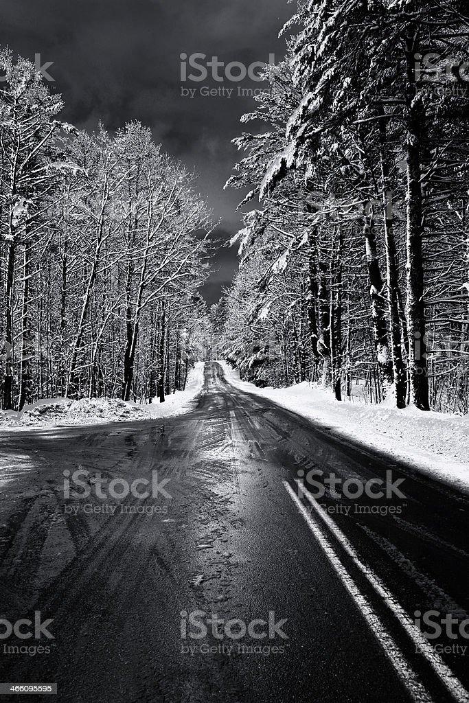 Dark Winter Way royalty-free stock photo