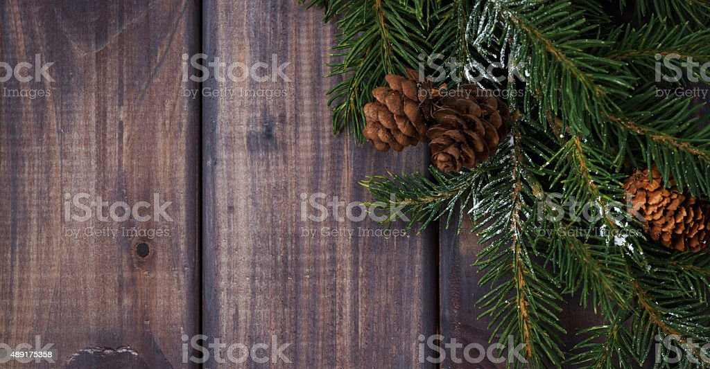 dark wood background with fir branches stock photo