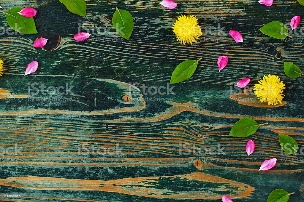Dark Wooden Background stock photo