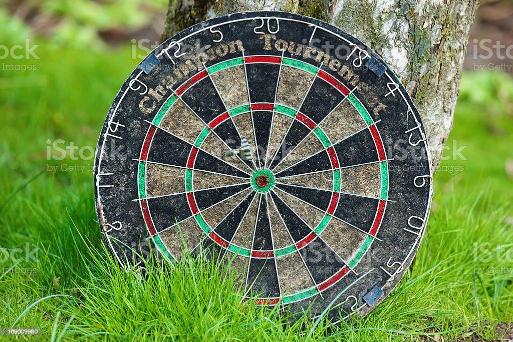 Dart board in the garden royalty-free stock photo