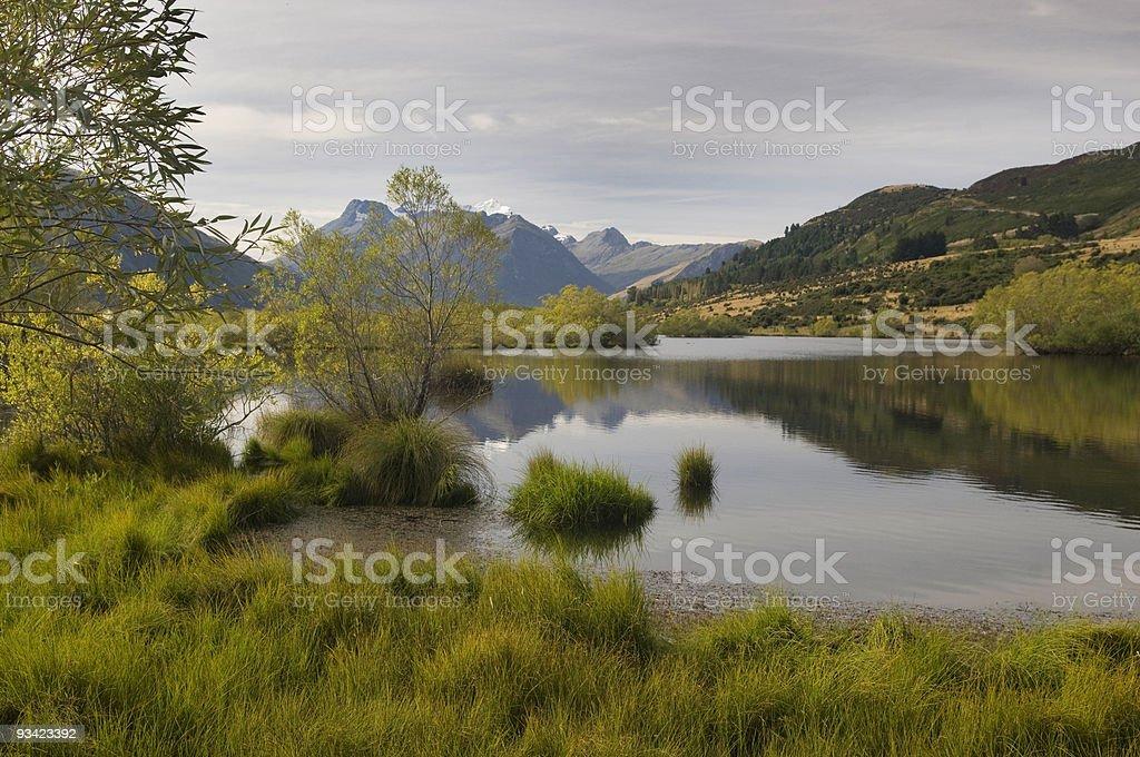 Dart Valley Wetland royalty-free stock photo